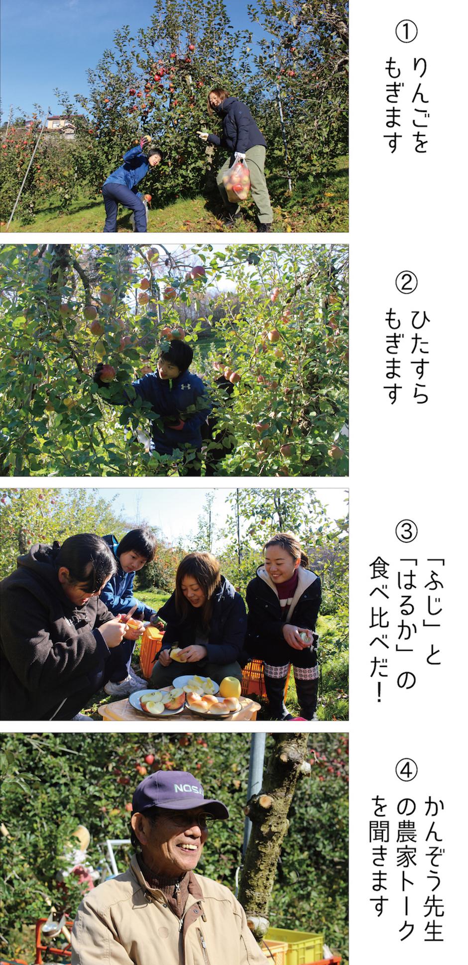 戸羽貫ゼミ_レポート_02